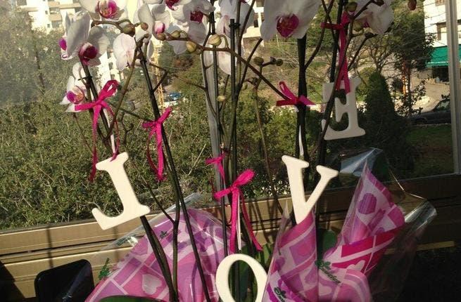 Cyrine Abdel Nour's Valentine's gift.