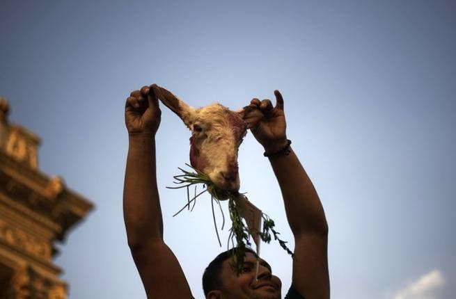 An Egyptian opposition protester holds up the head of a sheep as tens of thousands gather outside the Presidential Palace calling for the ouster of Egyptian President Mohammed Morsi (Gianluigi Guercia / AFP)