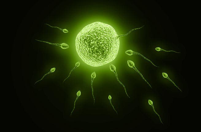 An Egyptian man in Dubai has claimed that his wife misused his sperm (Image for illustrative purposes: Credit: Shutterstock)