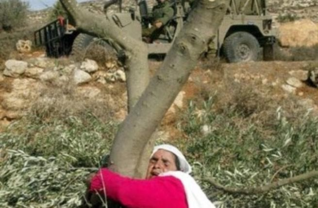The day for Arab tree-huggers: The annually commemorated Palestinian-born 'Land Day' (not to be confused with Global Earth Day), is nearly upon us. Friday March 30th promises a planned 'March to Jerusalem', from Lebanon and the West Bank. In spite of warnings from the Israeli government to stay clear, the marchers plan to move full force ahead.
