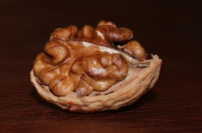 Walnuts- While visually resembling something more akin to animal brain-matter, this is just good old walnut goodness...