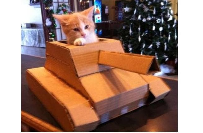 Since the FSA has been capturing numerous Assad tanks, kittens have begun training for tank duty. Here Zainab successfully completes her course on commanding a T-72.