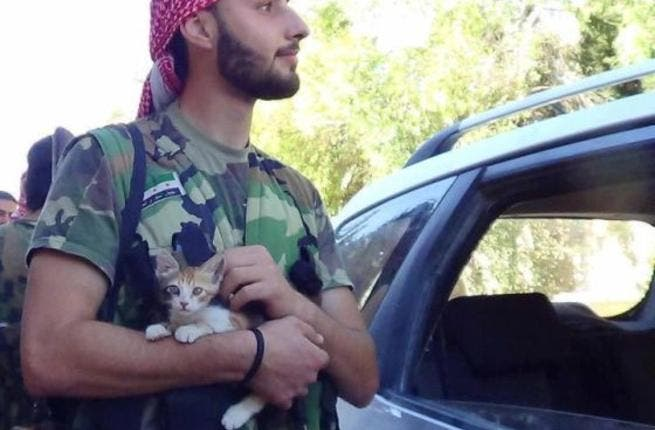 Help the kittens. Support the FSA.