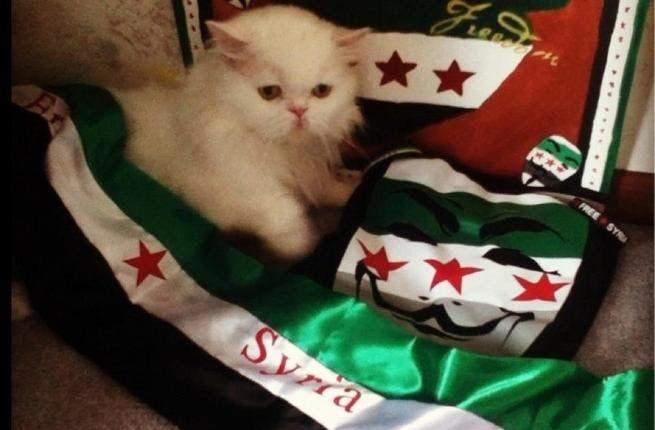 Foosa, a true Syrian patri-cat, shows his support for the Free Syrian Army.