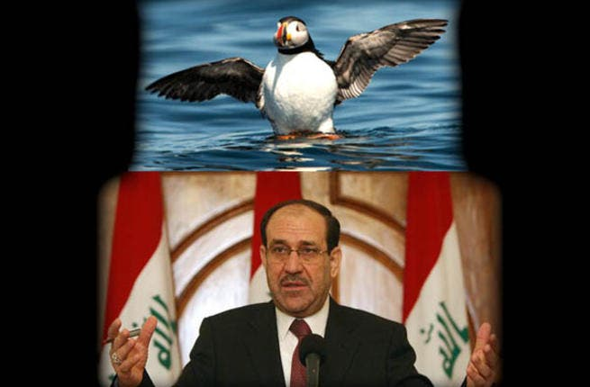 Nouri al-Maliki has had to somehow manage the varying terrains of religious and tribal violence. Just as a puffin can swim, walk or fly according to the situation, Iraq's leader has had to use an array of skills just to keep his head above the water.