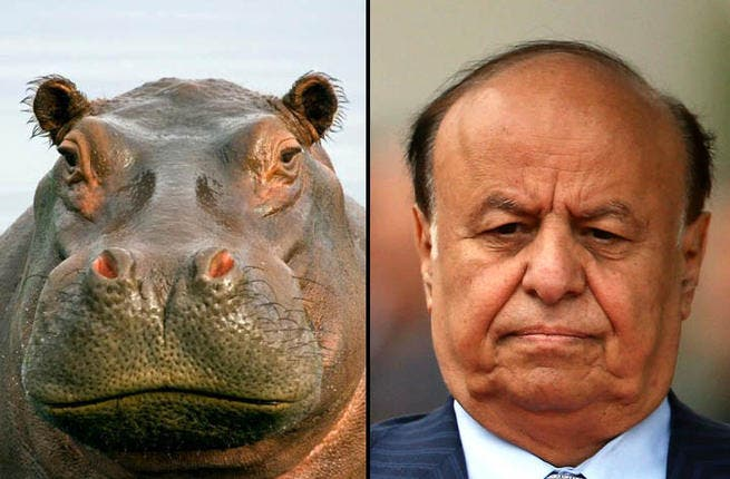 No animal is feared more in the soppy drudges of African swamps than the fierce and massive hippo.  Yemen's President Abd Rabbuh Mansur Hadi has needed to channel the beast as he battles the Al Qeada infestation in his country.