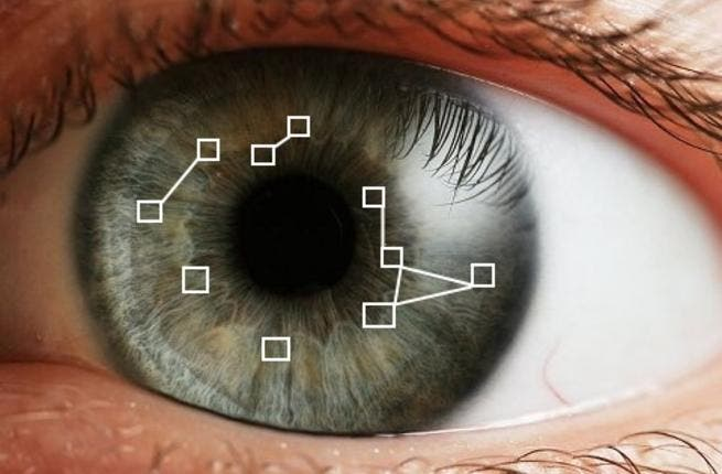 Iris scanners could be used at airports, border crossings, and other security checkpoints, in the search for criminals and terror suspects. [amazonaws]