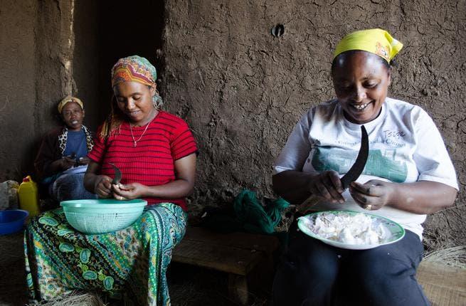 Women cut garlic in the rural Ethiopian village of Debre Berhan (Albawaba/J. Zach Hollo)