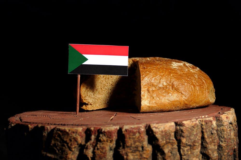 السودان يعاود حراكه الدولي بعد «احتجاجات الخبز»   البوابة