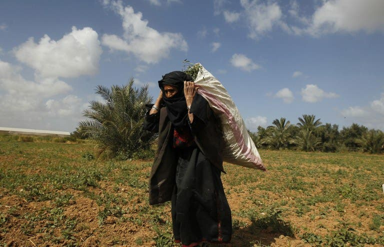 A Palestinian woman works on a field in Beit Hanun in the northern Gaza Strip on April 4, 2013. (AFP PHOTO/MOHAMMED ABED)