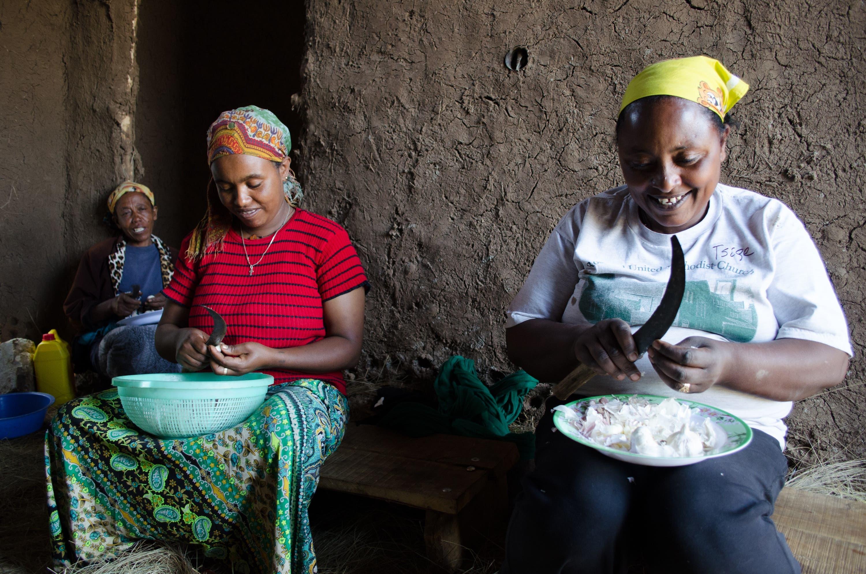 Two Ethiopian women cut garlic in the rural city of Debre Berhan. (Albawaba/J. Zach Hollo)
