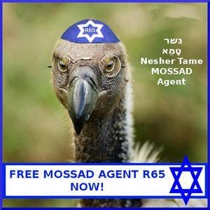 Israeli websites mocked Saudi Arabia, after the authorities there claimed to have arrested a vulture working for the Israeli spy agency Mossad.