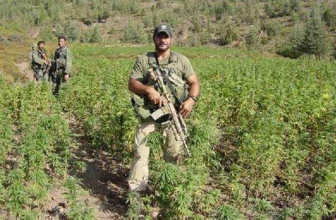 The marijuana fields of Lebanon