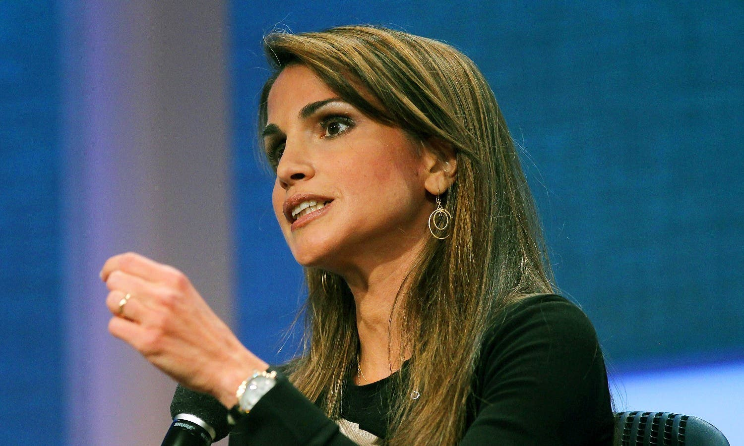 Queen Rania said the Arab world has the richest and the poorest countries in energy in spite of proximity of energy resources