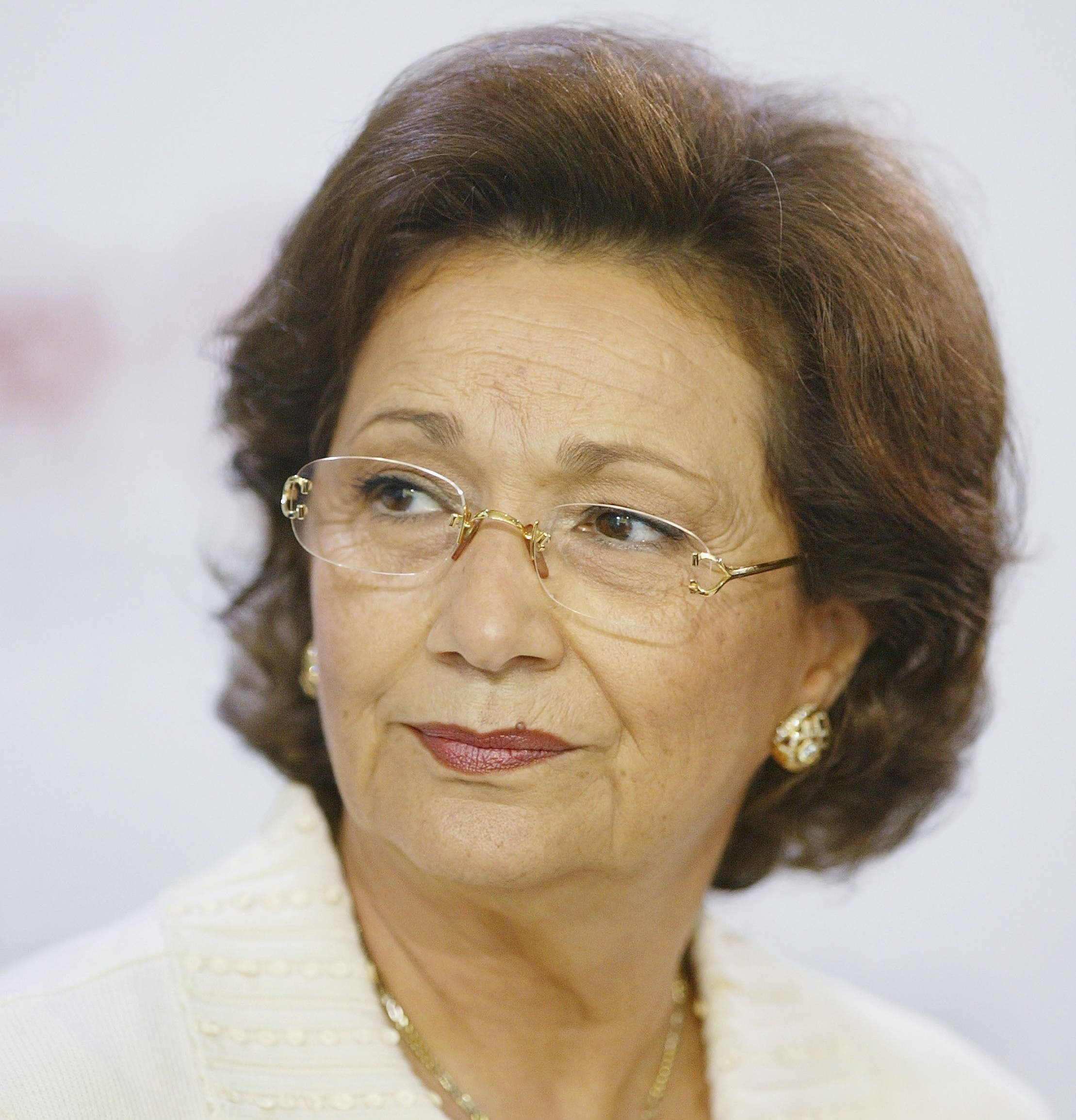 Al-Awa views Suzanne Mubarak as a possible threat to the Egyptian presidential election.