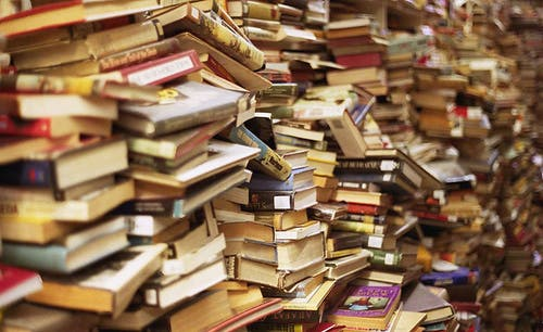 Books are expected to fly off the shelves at the 44th Cairo Book Fair this month