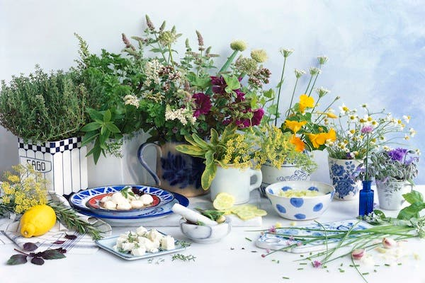 A selection of herbs (Getty images)