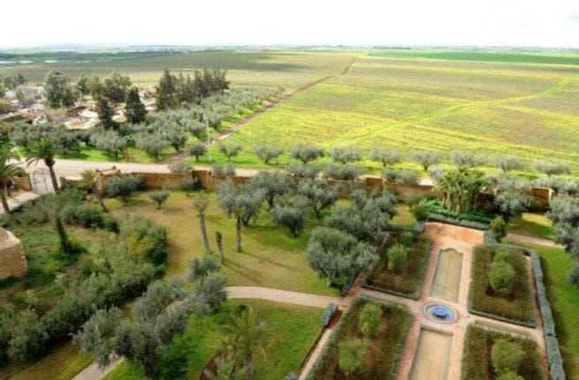 The Moroccan economy is expected to grow by 4.5 per cent in the first quater of 2013, due to increased agricultural activity