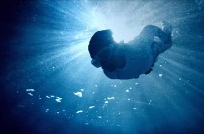 'The Turtle' was named Best HD movie of 2012