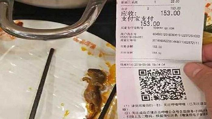 فار داخل حساء في الصين