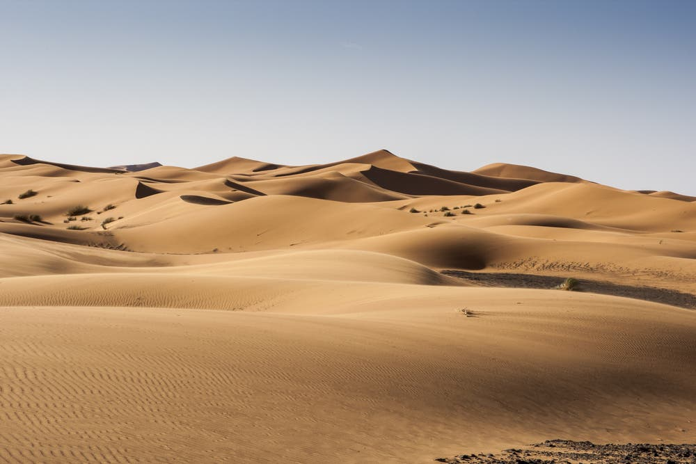 woman and son kill dubai tourist  found in uae desert