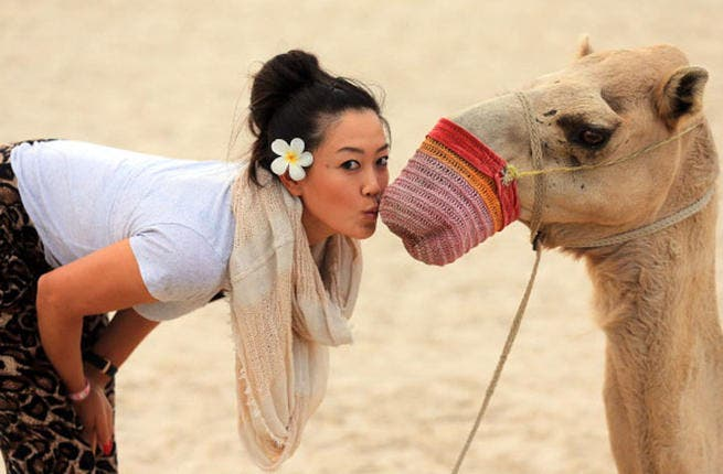 Michelle Wie of the USA comes up close with a camel on the beach at the Jebel Ali Golf Resort and Spa as a preview for the 2012 Omega Dubai Ladies Masters on December 2, 2012 in Dubai, United Arab Emirates. (Photo by David Cannon/Getty Images)