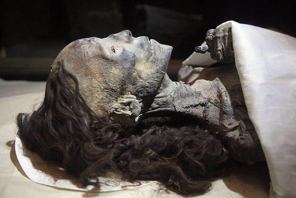 dark secrets about Queen Tiye Hair