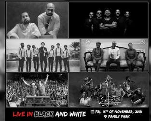Sharmoofers, Disco Misr, Massar Egabari, Wust El Balad, Black Theama, and Karakeeb; are guaranteeing an unforgettable night with the once in a lifetime line-up. (Source: sharmoofers_official - Instagram)