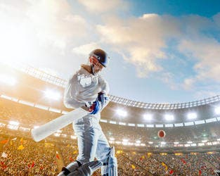 From Twenty20 games to Test matches, Dubai is a haven for cricket (Shutterstock)
