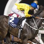 World class horse racing in Dubai