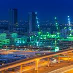 More than 41,000 companies employ over 354,000 people across Dubai's 24 free zones. (Shutterstock)