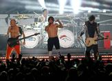 Red Hot Chili Peppers. (AFP/File)