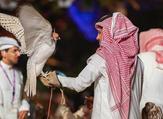 Riyadh's Falconry exhibition (Twitter)
