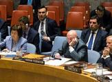 مندوب روسيا الدائم لدى الأمم المتحدة نيبينزيا