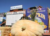 A 2,170-Pound Pumpkin Wins Half Moon Bay Festival. (Twitter)