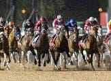 سباق ميدان للخيول: 2 مارس