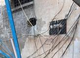 الأجهزة الأمنية تكثف جهودها في البحث عن الفارين الخمسة، وإعادتهم للسجن