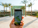 Careem is considered as one of the top ride-hailing app in the MENA region. (Shutterstock)