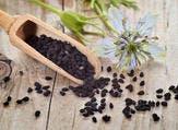 يحتوي زيت الحبة السوداء على مضادات الأكسدة الضرورية(shutterstock.com)