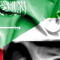 The total value of non-oil trade between the UAE and Saudi Arabia amounted to $29.4 billion in 2018