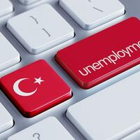 Last year, the unemployment rate hovered between 9.6% and 13.5%.