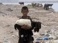 An Afghan refugee boy carries a sheep near his makeshift house in Lahore on June 19, 2019, ahead of World Refugees Day. World Refugee Day is observed June 20 each year internationally to raise awareness of the situation of refugees throughout the world. (ARIF ALI / AFP)