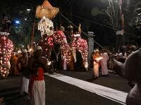 "In this photograph taken on August 14, 2019 participants lead elephants decorated for the ""Esala Perahera"" festival during a parade near the Buddhist temple of the Tooth in the ancient hill capital of Kandy, some 116 km from Colombo. Lakruwan WANNIARACHCHI / AFP"