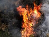 Fire takes out forests in the mountainous area that flank Damour river near the village of Meshref in Lebanon's Shouf mountains, southeast of the capital Beirut, on October 15, 2019. Flames devoured large swaths of land in several Lebanese and Syrian regions. The outbreak coincided with high temperatures and strong winds, according to the official media in both countries. JOSEPH EID / AFP