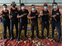 Uruguayan sheep shearers pose with their blades at a cattle farm in Villabraz in the province of Leon in northern Spain on May 15, 2020. Some 258 Uruguayan shearers arrived in Spain on a plane from Montevideo this week to participate in a campaign in different parts of Spain. They underwent check-ups for the novel coronavirus before leaving Uruguay and before starting work in Spain where they will stay until July 20. CESAR MANSO / AFP