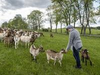 "Izabela Ciesielska owner of the ""Nad Arem"" farm specialised in goat cheese - is seen among the goat herd in the meadow in the Masuria - polish lake region, May 15, 2020. The sheep and cows are in the meadow, the cheese is ripening in a room on the ground floor -- just the kind of scene attracting increasing numbers of Polish city-slickers away from the urban jungle. Wojtek RADWANSKI / AFP"