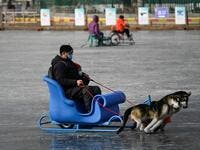 A man and a child use a sled on a frozen lake in Beijing on January 12, 2021. WANG Zhao / AFP