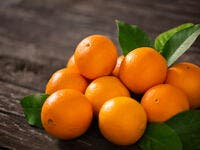Egypt Exports First-Ever Shipment of Orange to Japan