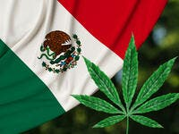 Mexico Legalizes Recreational Use of Marijuana