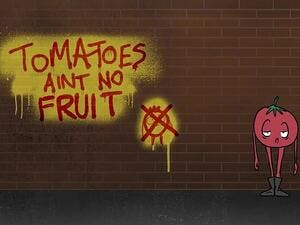 Later in the clip, the tomato sees a lemon spraying graffiti that says: 'Tomatoes ain't no fruit.' Former officer Harry Miller, of the campaign group Fair Cop, said: 'It is beyond absurd. This is why the public are losing respect for the police. (Video Screenshot)